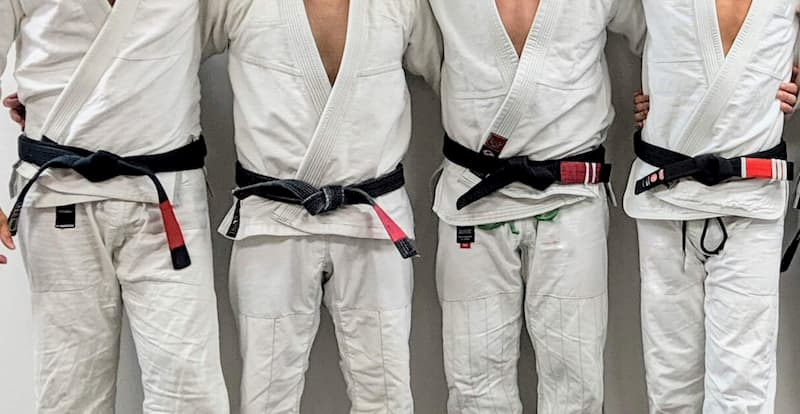 A row of BJJ black belts